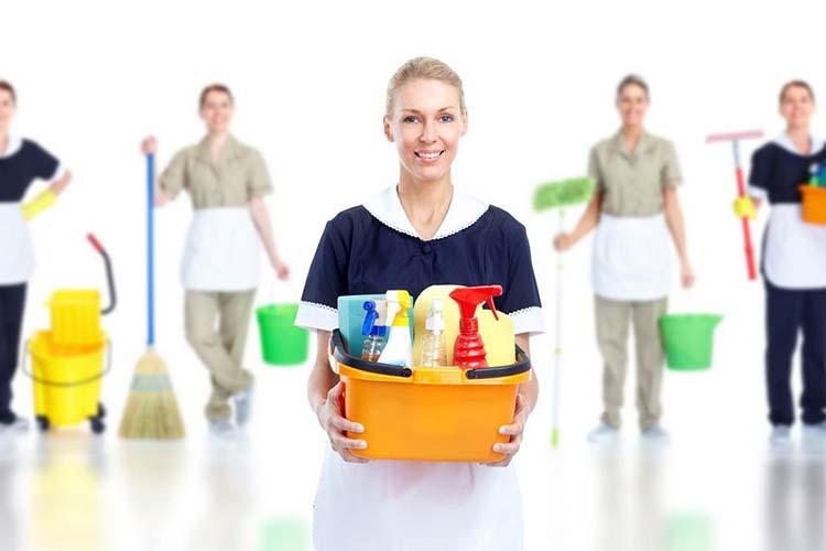 شرکت خدماتی، نظافت منزل نارمک